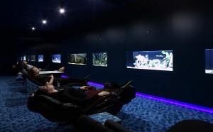 Se relaxer avec les poissons chez Google à Zurich.
